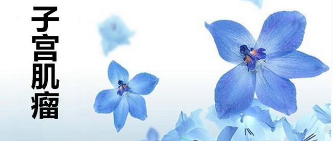 子宫肌瘤,在女性当中非常常见,是一种良性的肿瘤,主要由平滑肌细胞增生而成