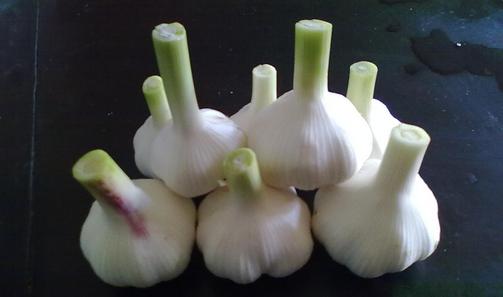 虫咬伤用大蒜切片或捣敷 大蒜的功效与作用